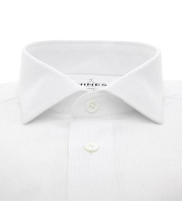 shark-collar-shirt